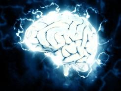 brain-1845962_1920-1